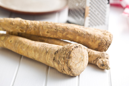horseradish: fresh horseradish root on kitchen table