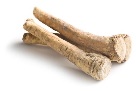 fresh horseradish root on white background