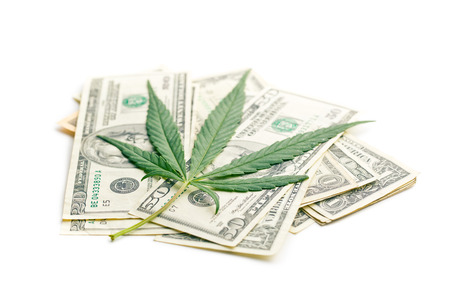 the cannabis leaf and money