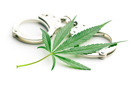 the cannabis leaf and handcuffs Reklamní fotografie