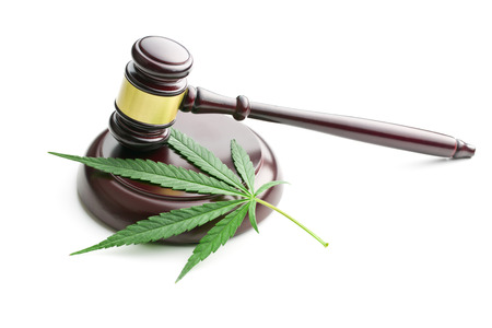 the cannabis leaf and judge gavel Imagens