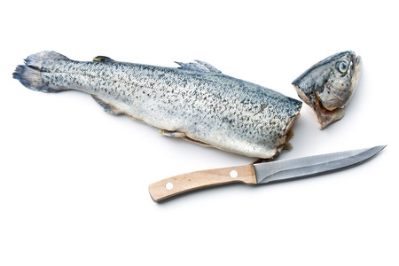 gutted: the gutted trout with knife on white background