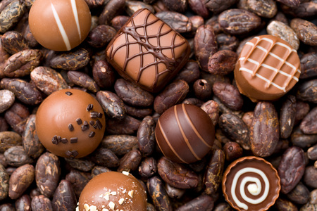 cocoa beans: the chocolate pralines and cocoa beans