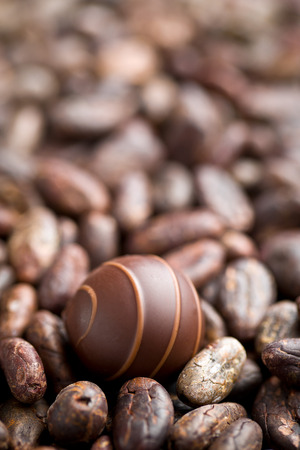 praline: the chocolate praline and cocoa beans