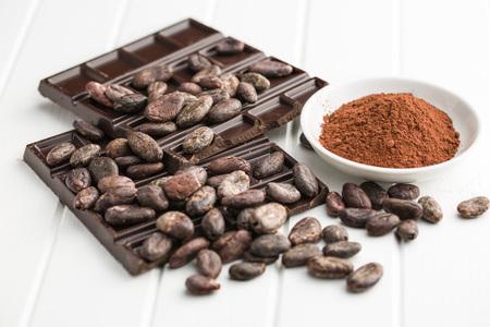 the dark chocolate, cocoa beans and cocoa powder