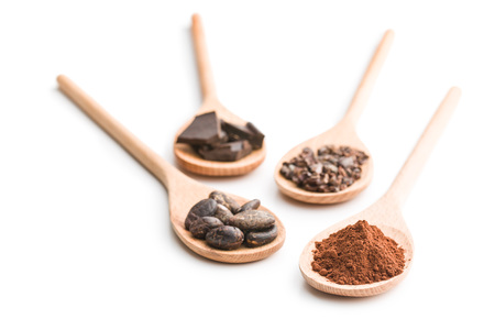 cocoa and dark chocolate in wooden spoons on white background Imagens