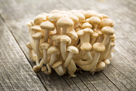 breech: Brown shimeji mushrooms. Healthy superfood on wooden table.