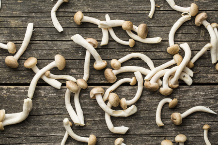 breech: Brown shimeji mushrooms. Healthy superfood on old wooden table. Stock Photo