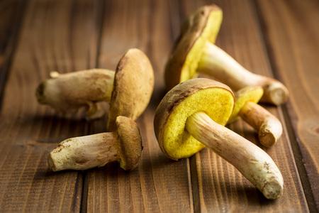 fungi woodland: Autumn harvest of fresh woodland fungi with boletus mushrooms on old wooden table.