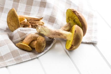 fungi woodland: Autumn harvest of fresh woodland fungi with boletus mushrooms on white table.