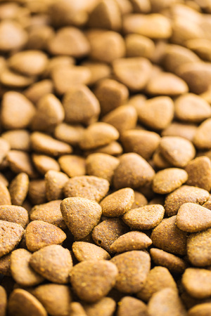 kibble: The dry kibble dog food.