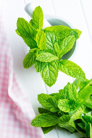Branch mint leaves on white table.