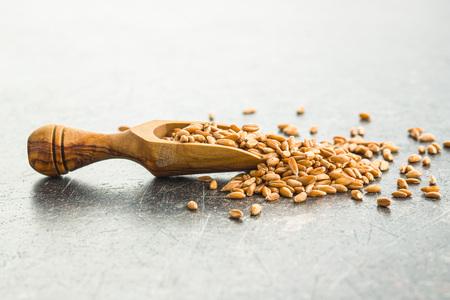 Healthy spelt grains in wooden scoop. Stok Fotoğraf