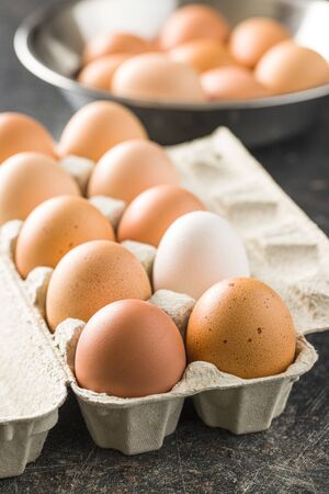 Raw chicken eggs in egg box.