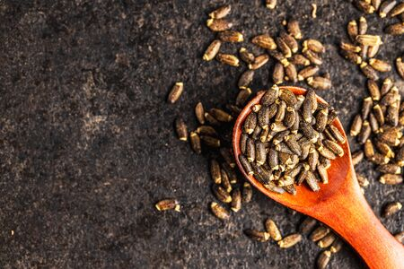 Milk thistle seeds in wooden spoon. Top view.