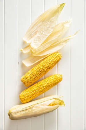 Uncooked corn cob on white table. Top view.