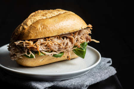 Sandwich with pulled meat on plate Imagens