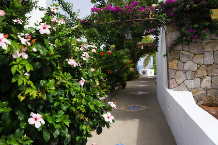 Panarea is the smallest and most picturesque of the Aeolian Islands