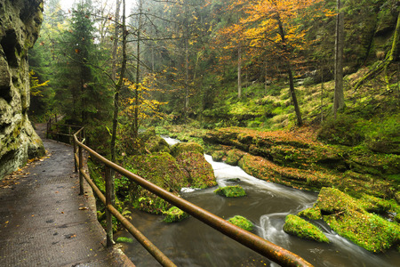 czech switzerland: Wild Gorge is located in the Czech Switzerland National Park