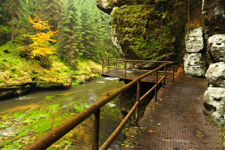czech switzerland: Wild Gorge is located in the Czech Switzerland National Park