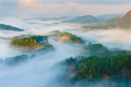 morning blue hour: Sunrise in the Czech Switzerland, Czech Republic