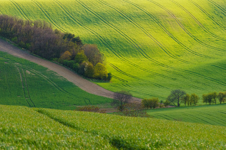Moravian Tuscany is called a corrugated landscape near Kyjov, Moravia, Czech Republic