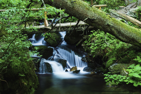 Bila Opava (White Opava)  is a wild mountain stream in the Jeseniky mountains