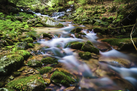 Ponikly creek is a mountain stream in the Jesen?ky mountain range, northern Moravia, Czech Republic