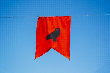red owl banner with blue sky in the background. Medieval concept