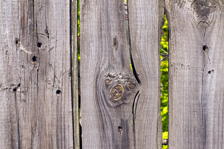 lopsided: Old wooden fence grey color. Through the large cracks visible greens. Stock Photo