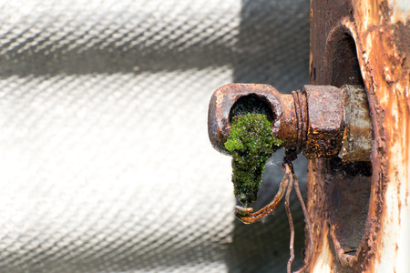 depletion: From old rusty pipes (broken faucet) is dripping water. The tube is overgrown with green moss and algae.