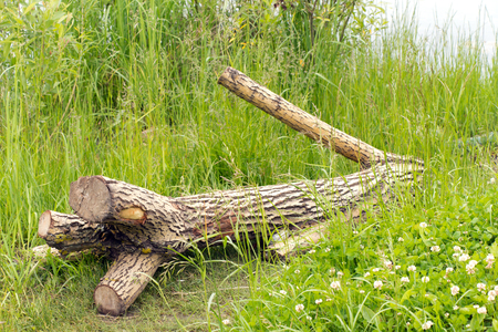 slump: A tree without branches is (fell) on the green grass. All the branches sawn off. In the  background the water (river or lake).