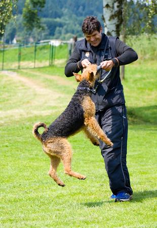 cynology: Man play with dog