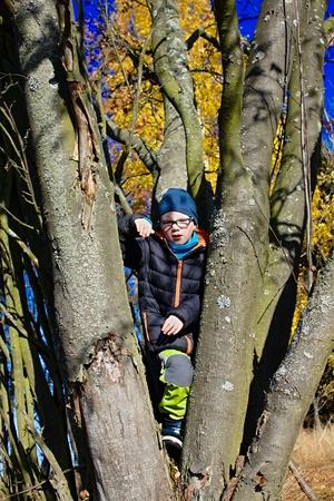 boles: young happy boy in the tree between boles in autumn