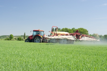 pesticides: Agriculture - tractor dusting chemical manure (plant protection with pesticides)