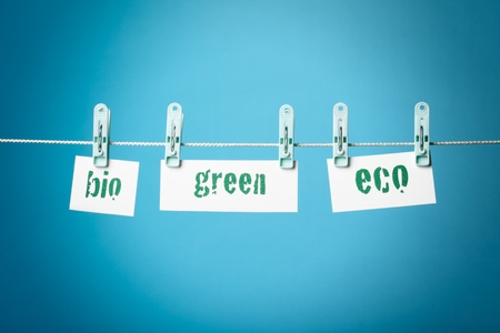 buzzwords: Greenwashing concept with buzzwords green, bio and eco