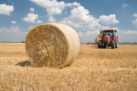agriculturalist: Agriculture - tractor on the field with harvested corn in haystack Stock Photo
