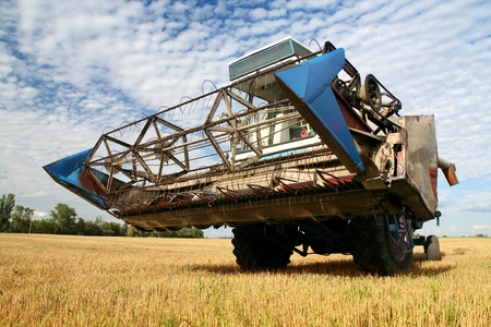 agriculturalist: Agriculture - Combine (harvester) on the field Stock Photo