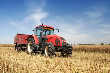 agriculturalist: Agriculture - tractor on the field with harvested corn Editorial