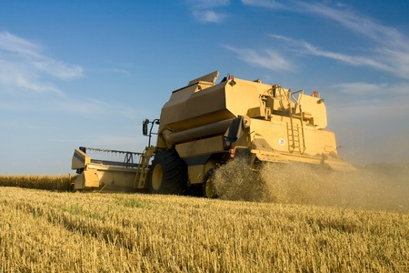 agriculturalist: Agriculture - Combine (harvester) on the field Editorial