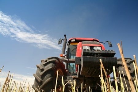Agriculture - tractor on the field with harvested corn (bottom view) Stock Photo