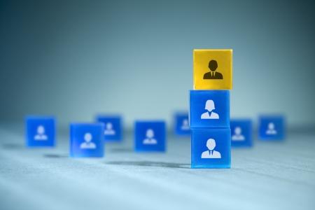 configuration: Human resources, team composition, team configuration, teamwork, cooperation and team leader (CEO) concepts.