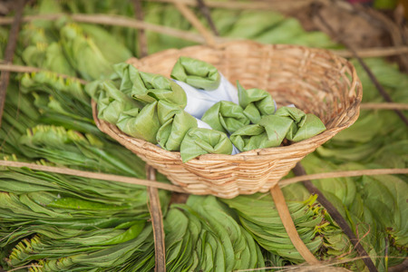 hydroxide: Bundle of betel leaves - traditional Indian and Sri Lankan product.
