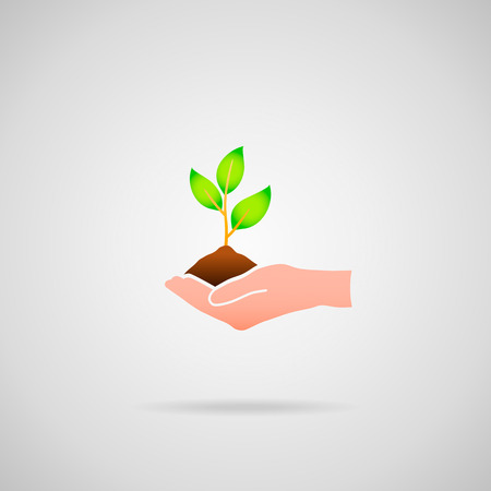 bio safety: Save tree, save planet. Vector icon of tree (plant) in hand, cliché image.