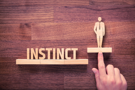instinct: Successful manager has business instinct. Businessman with instinct has potential to growth. Stock Photo