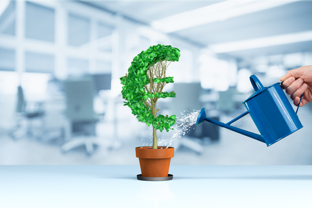 Euro income growth concept. Income growth represented by plant in shape of Euro symbol watered by CFO, investor, stockholder and similar business person. Stock Photo