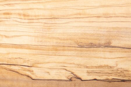 Olive tree wood texture and material decorative surface. Propagation design element.