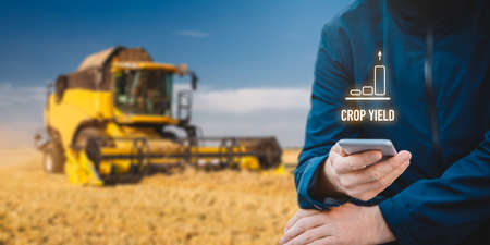Intelligent agriculture concept with growing crop yield. Farmer or agrarian with smart phone looking on growing efficiency and crop yield, harvester harvest grain in background.