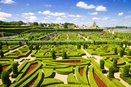 Amazing gardens from Villandry chateau, France photo