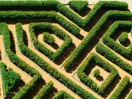 hedge plant: Hedges gardens, aerial view Stock Photo